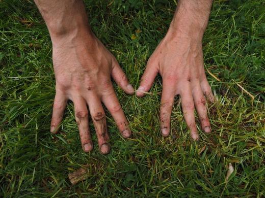 hands-1260770_1280.jpg