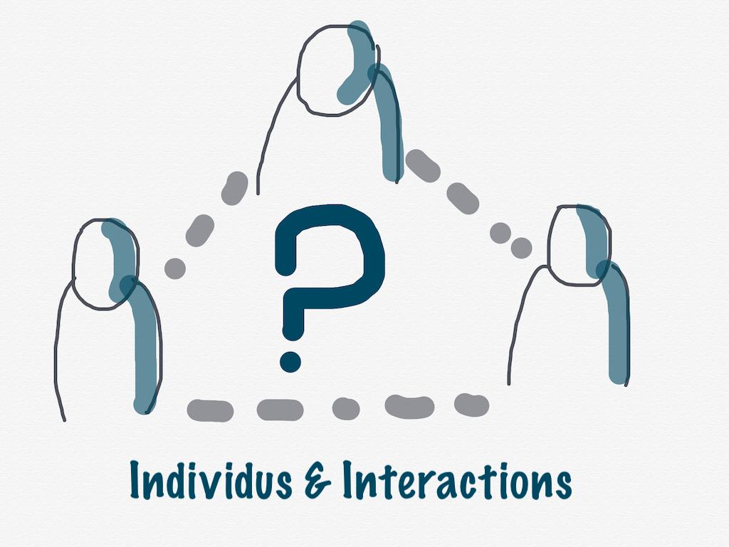 Individus et interactions